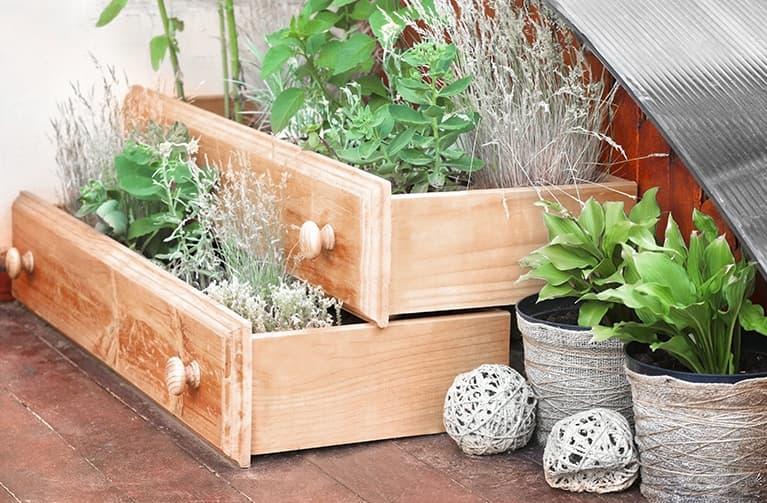Holzschubladen mit Pflanzen