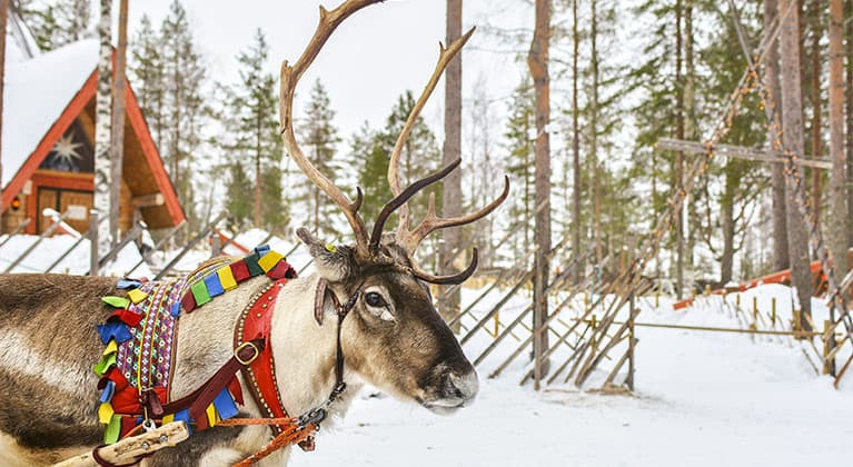 Weihnachten in aller Welt
