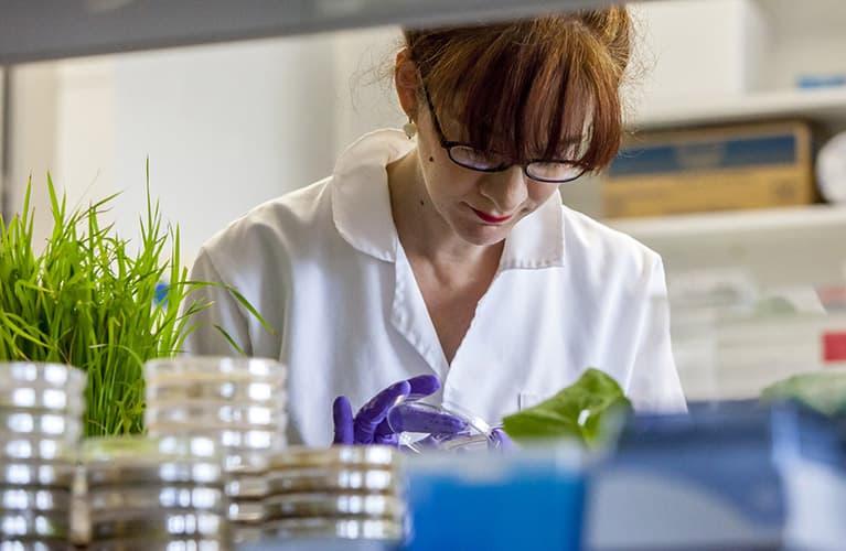 herbal-essences-lab