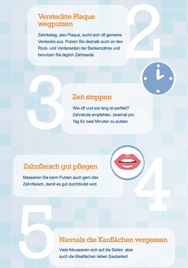 7358-Infografik_Zaehne_Art-02