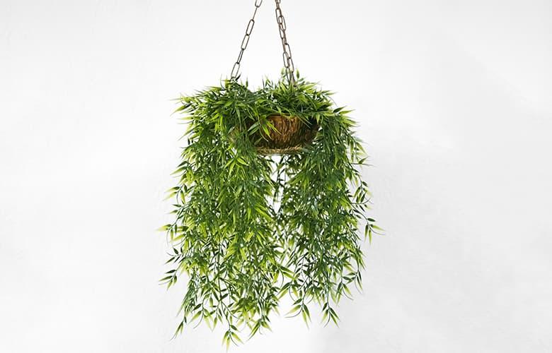 Πέντε ιδέες κηπουρικής για να μετατρέψεις το μπαλκόνι σου σε όαση δροσιάς