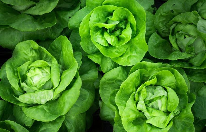 Έτσι θα ετοιμάσεις την τέλεια καλοκαιρινή σαλάτα