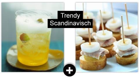 Trendy Scandinavisch