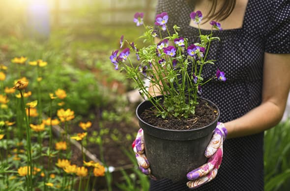 mujer-jardineria